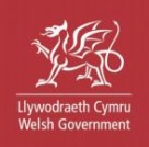 Welsh Government Consultation on Loneliness and Social Isolation
